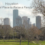 Issues Affecting Houston Real Estate in 2013